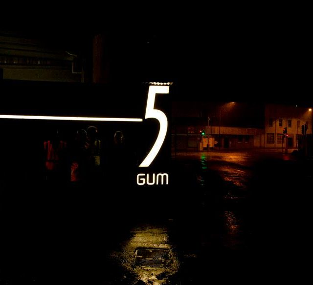 5 GUM EXPERIENCE, THE KOOKS JOHANESBURG 2013